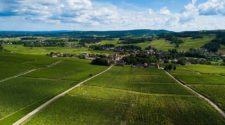Mercurey Vineyard in Burgundy