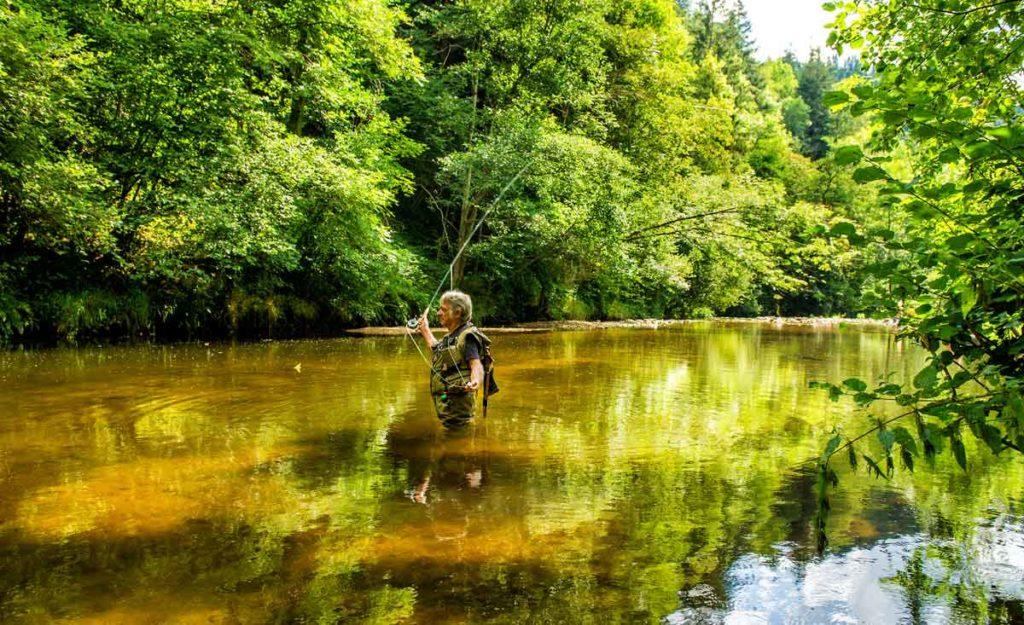 Listings we love camping des vrais campings pour - Camping dordogne avec piscine et lac ...